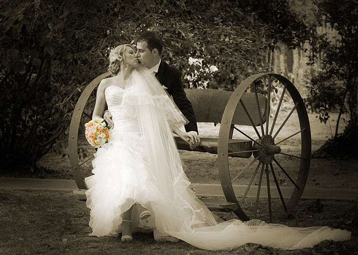 sepia and part color wedding photo of couple on wagon in garden