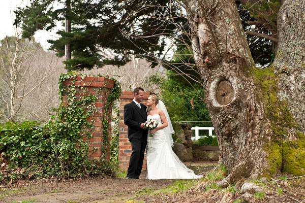 featuring an old gate, newlyweds and giant oak tree wedding photography.