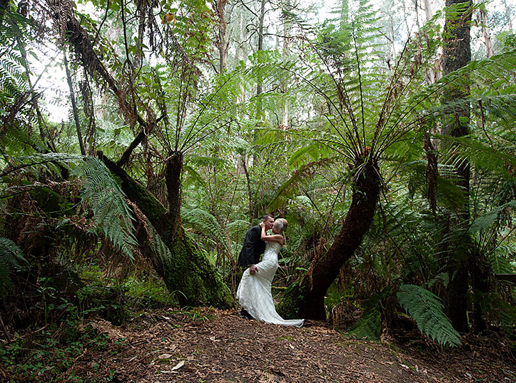 melbourne forest wedding photographer